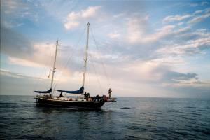 Udo Am Delphin-Boot